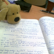 Doučování, pomoc s přípravou na vyučování